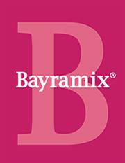 bayramix-logo